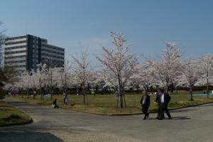 開成山20090413.JPG